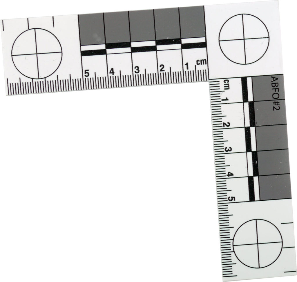 No. 2 Photomacrographic Scale - Metric